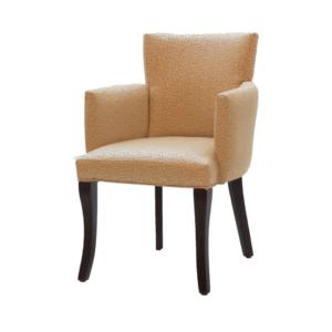 Lounge Chair Model 5060